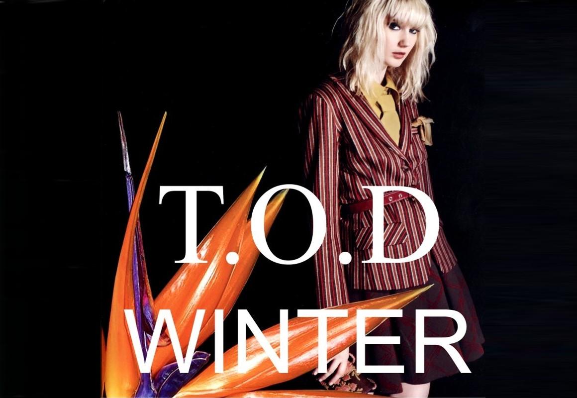 TOD_Winter_2017.jpg